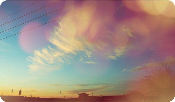 亲吻阳光(原) - 雪卉 - 麦田中的呓语