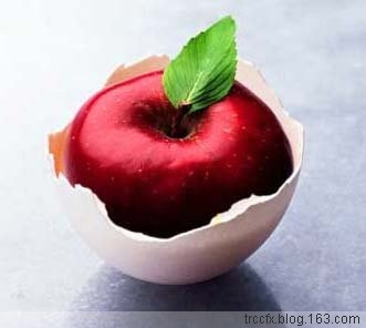 平安夜,我只想吃个苹果! - 睿睿 - 睿睿的绚烂天空