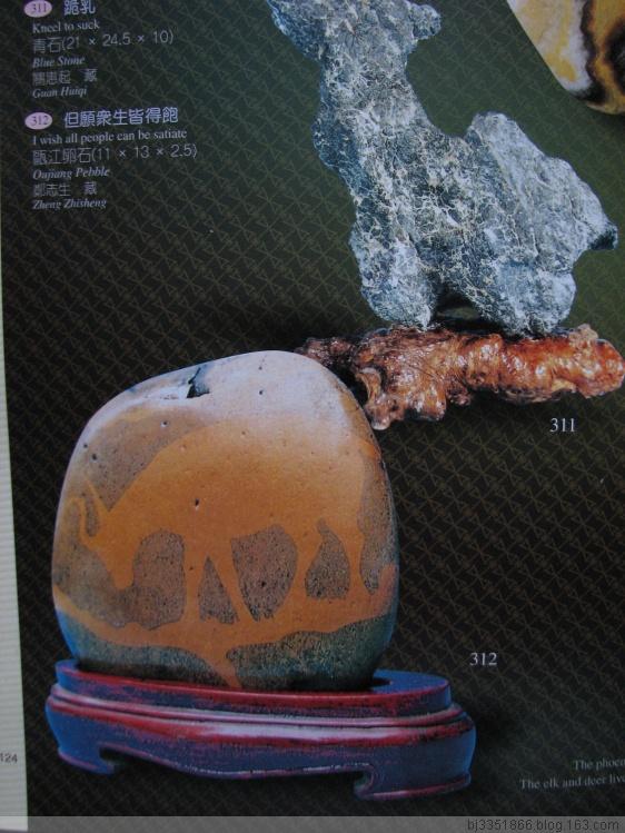 欣赏与思辩 - 真奇石苑 - 真奇石苑—刘保平的博客