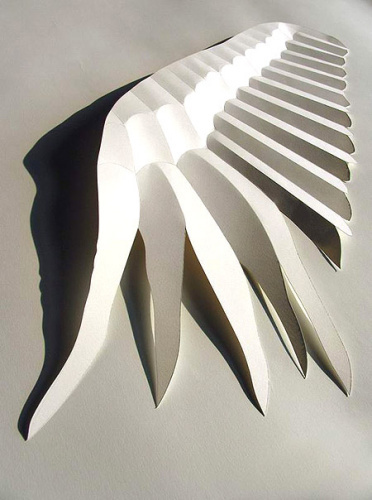 引用[转]纸造型/立体构成艺术的效果二