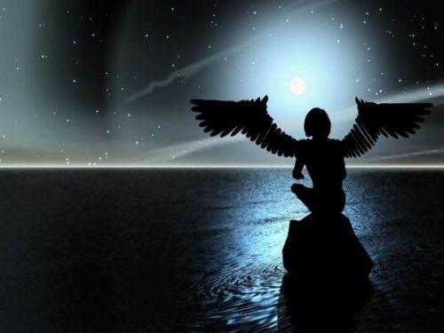 2008-03-21的日记 - nnhhs10 - 流星划过夜空