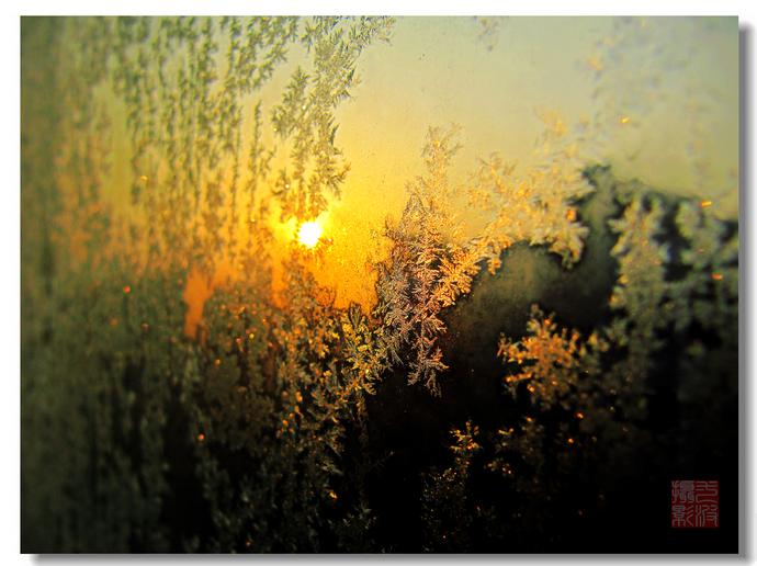 昨夜,是谁悄悄在窗外洒下一把晶莹?_行走在西部的草原_新浪博客 - 行走在西部的草原 - 行走在西部的草原