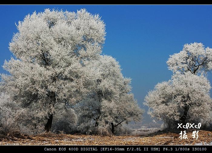 【穿越东北】17、欢乐雾凇岛 - xixi - 老孟(xixi)旅游摄影博客