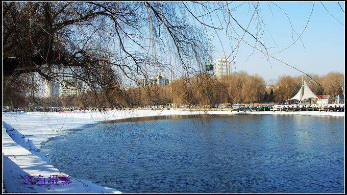 南湖冬雪南湖 - 沉鱼 - 沉鱼雅居