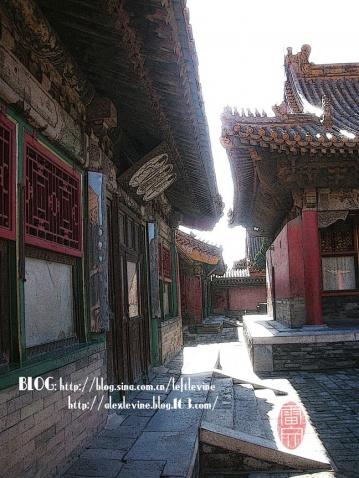 瑰丽故宫--京城记录 - 雷文 - 雷篆文書