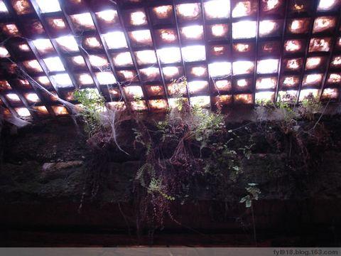 到西雅图观光(8):探访西雅图地下城 - 阳光月光 - 阳光月光