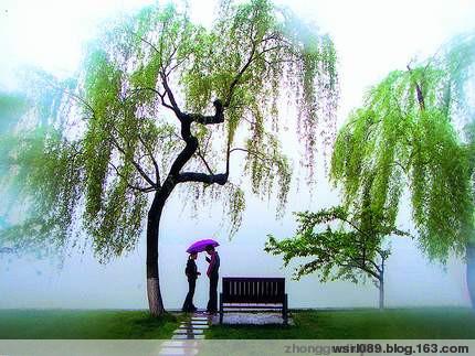 清平乐·春意 - 渭水若岚 - 渭水若岚的博客