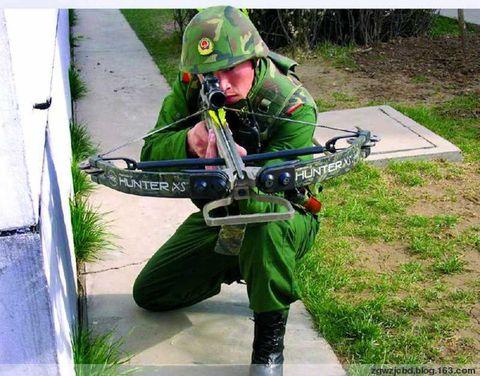 中国警察警种分类 - 酒鬼鼠 的日志 - 网易博客 - 不老松 - 不老松的博客