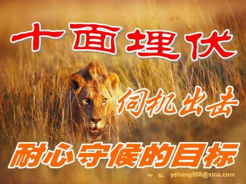 十面埋伏——伺机出击耐心守候的目标 - 叶弘 - 叶弘 谈股市股民股票