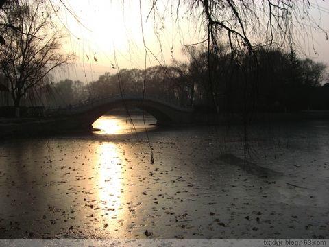 悠闲冬日 - 七弦琴 - 我的博客