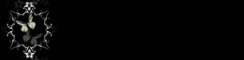 黑色素材——黑色横条(三) - 红酒百合 - 百合伊甸园