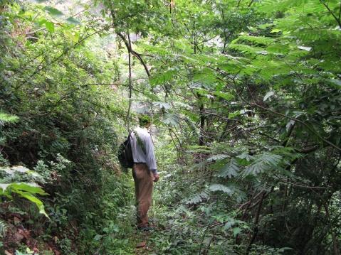 寻找瀑布 - 江村一老头 - 江村一老头的茅草屋