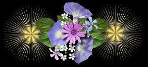《静水原创》 《岁月征文》宽容之心微笑面对生活 - 静水澜语 - .
