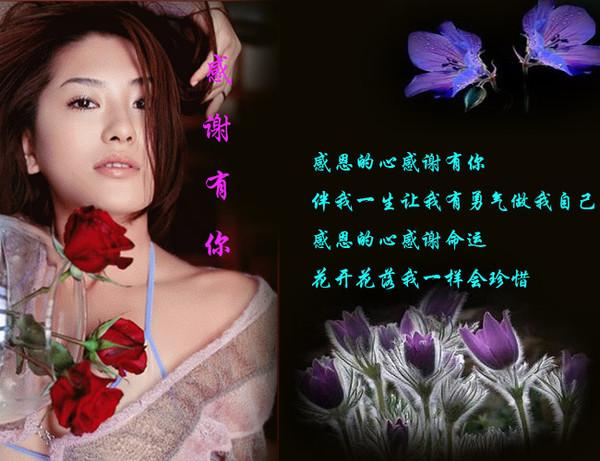 博客问候图片 - 雁月菊蚕 - 流泪的风......