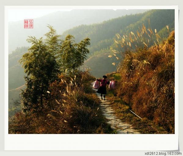 桂林行之——龙胜 - 五味杂陈 - 我的人生驿站