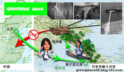 直击:破坏雨林的罪与罚 - 绿色和平 保护地球环境 - 绿色和平