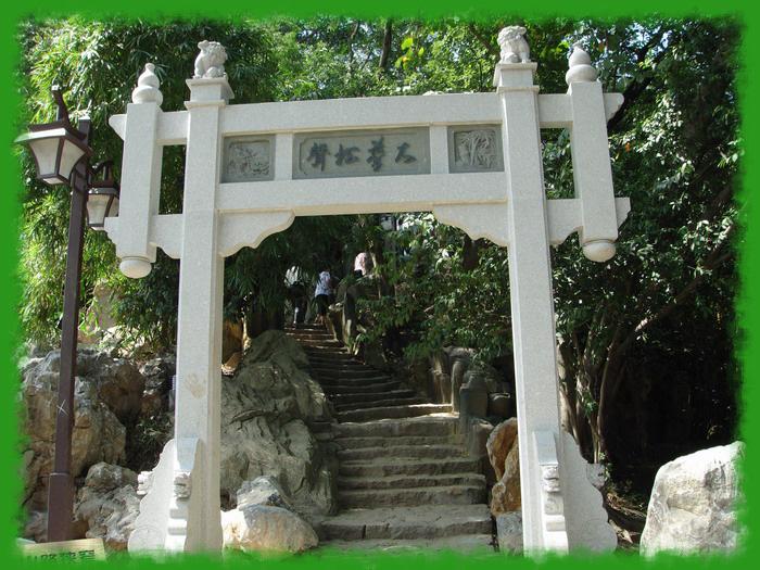 西湖新印像——大梦山景区(二) - 老猫侠 - 老猫侠的博客
