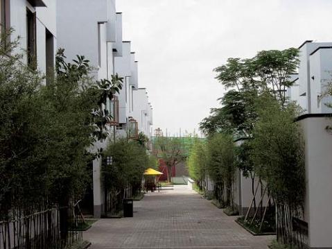 """""""新中式""""景观植物设计区别于欧式景观植物设计的特点"""