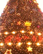圣诞快乐哈! - vip-shanye - 山野《说。》