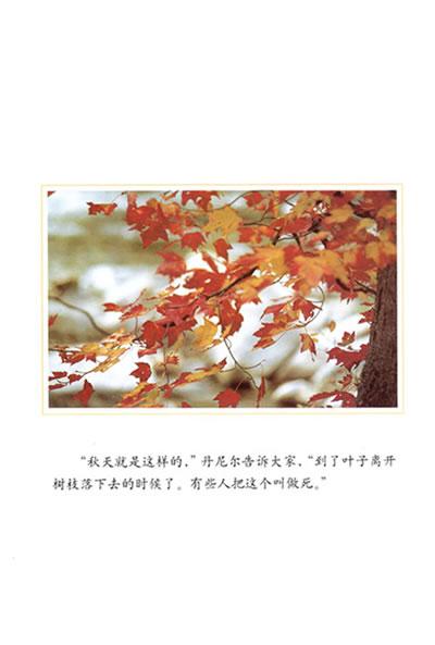 一片叶子落下来【转】 - 灰菜 - 流年碎影 深藏记忆