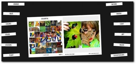 [Digg] 让搜索Flickr图片更容易 - 李二嫂的猪 - 翱翔的板儿砖