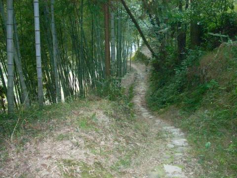 智仁山区笔记(4)----    感受贫困 - 山水悠游 - 山水悠游的博客
