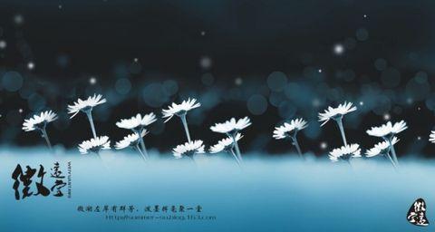 【诗林词雨】春节特辑之【恺撒诗集】from ◆左岸的新年礼物◆ - 左岸 - 【微 远 堂】