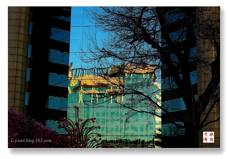 光与影(原创摄影) - 冰滴卡布 - l-j-wei的个人主页