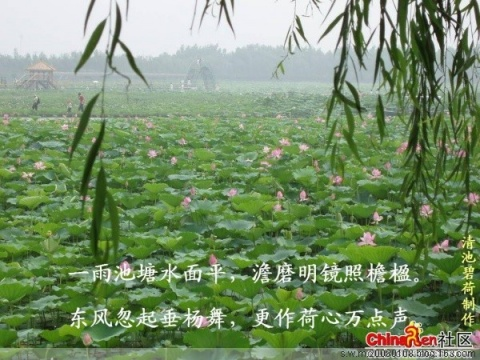 (原创)(词)满庭芳·味道 - 寒江 - 词韵诗风润寒江