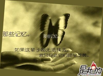 http://s12.album.sina.com.cn/pic/485fe2d502001b5b