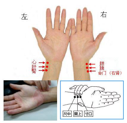 中医把脉方法精心收集的把脉口诀以及图表【转】 - xing_fu8868 - xing_fu8868 的博客