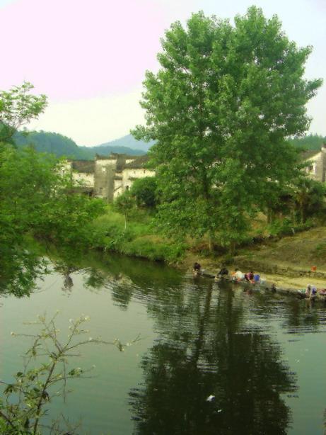 《江南归来不看绿》 —— 2006中国古村落之旅(下) - 黑客老鹰 - 我是老鹰的博客