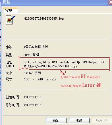 2008年11月24日 - 伊伊 - 伊伊的博客