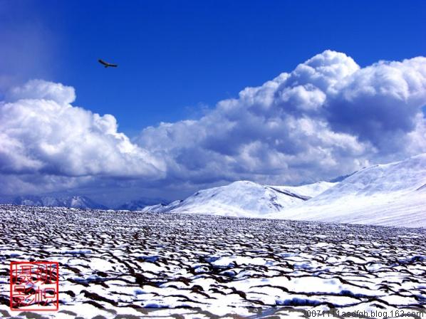 【经典收藏】温情与丰美并存的冬日祁连山…… - 陌上烟云 - 牧场古谣