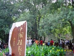 我的故乡— 型塘 - wcf-13913 - 稽山红叶的博客