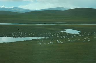 西藏风景(列车行进在青藏高原--9)2007年10月09日