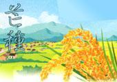 芒种,忙中(城市版) 20080605