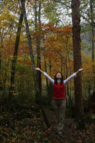 请看我们这些成都人的幸福生活 - 叶子 - 雾山红叶