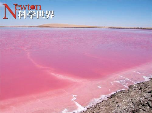 盐湖导致2.5亿年前生物大灭绝 - kxsj - Newton-科学世界