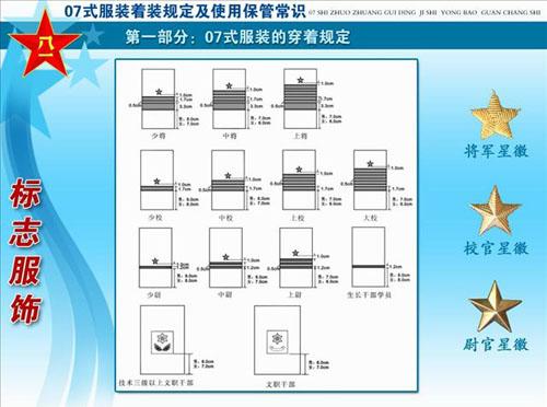 07式新军装揭密之军衔标志 胸标 臂章 组图图片