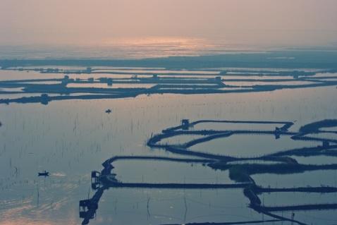美丽的海边滩涂 - 曹高氏 - caogaojian2570的博客