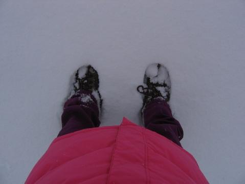 天天看雪 - Xian - 格子的博客