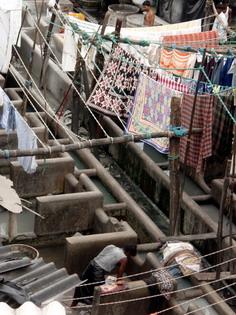 印度随笔-02-孟买印象-组图(下) - 王志纲工作室 - 王志纲工作室