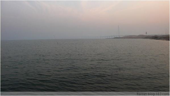 [原]深圳·后海湾里的工地 - Tarzan - 走过大地