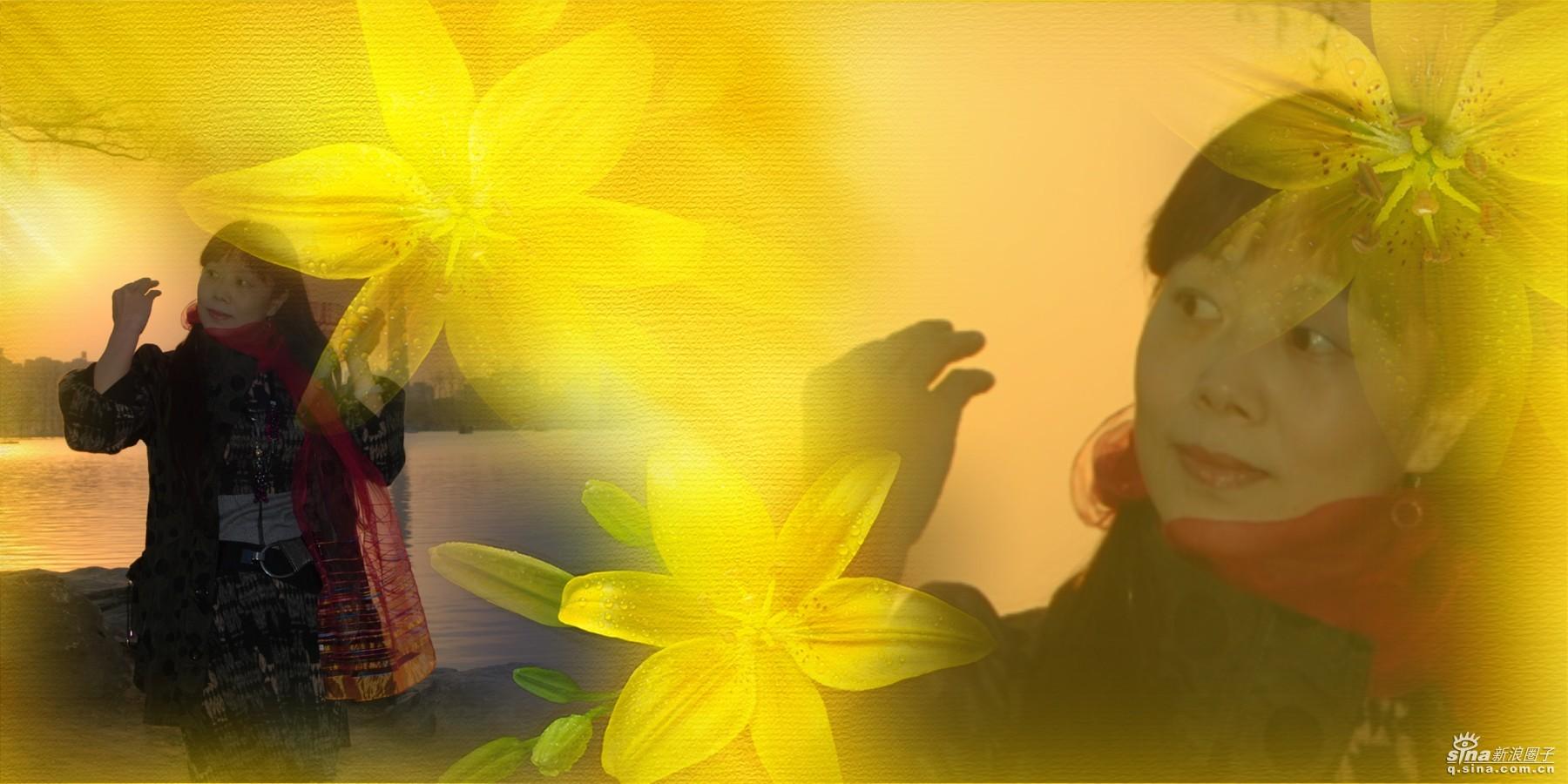 雨忆兰萍词 【南歌子】  初识玉渊潭 - 雨忆兰萍 - 网易雨忆兰萍的博客