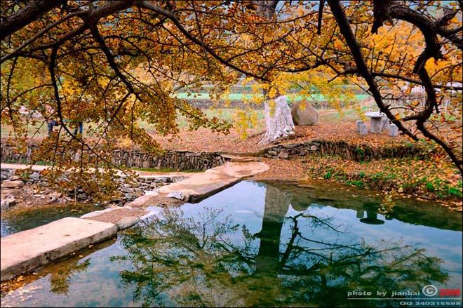 《满江红·岁月》 - 刘了凡了 - liuqingpu2009 的博客刘了凡