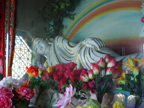 居士林 - 临夏市佛教居士林 - 临夏市佛教居士林