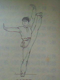 武术平衡法 之 侧举腿平衡与侧身平衡的异同 - 痴人 - 涤喧斋