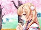 花香,是花开花落的声音 - 雪天使 - 雪沫