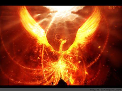 """""""不死鸟"""" - 不死鸟 - Phoenix"""